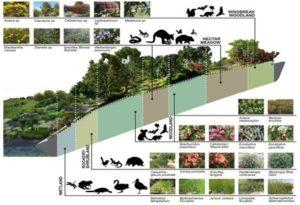 Celebrate Biodiversity in Agriculture