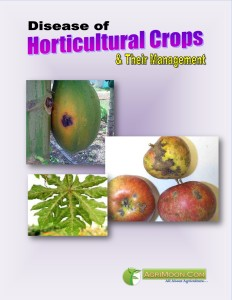 Disease of Horticultural Crops & their Management COVER