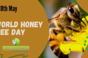 World Honey Bee Day
